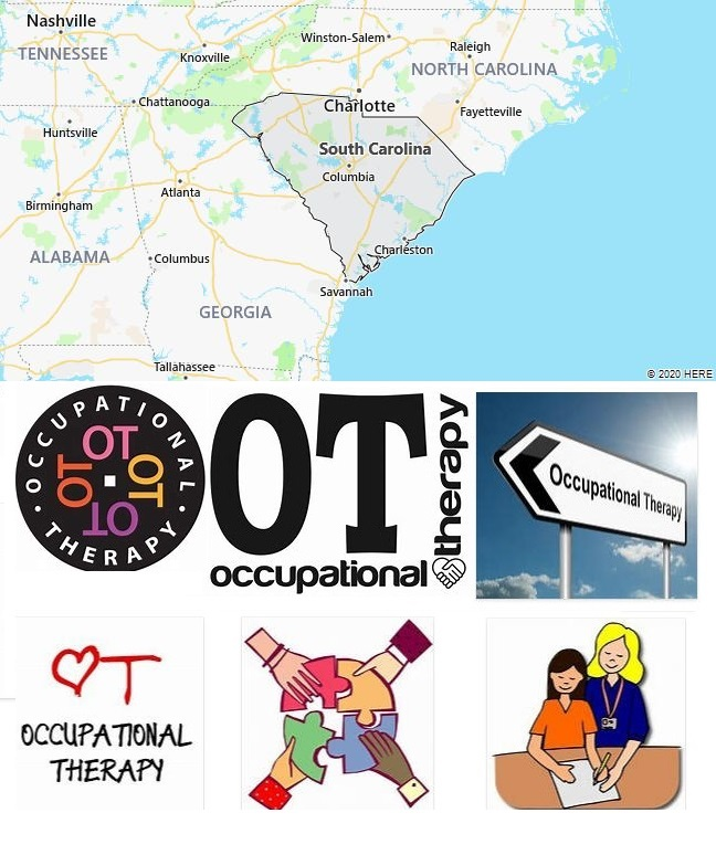 Top Occupational Therapy Graduate Programs in South Carolina