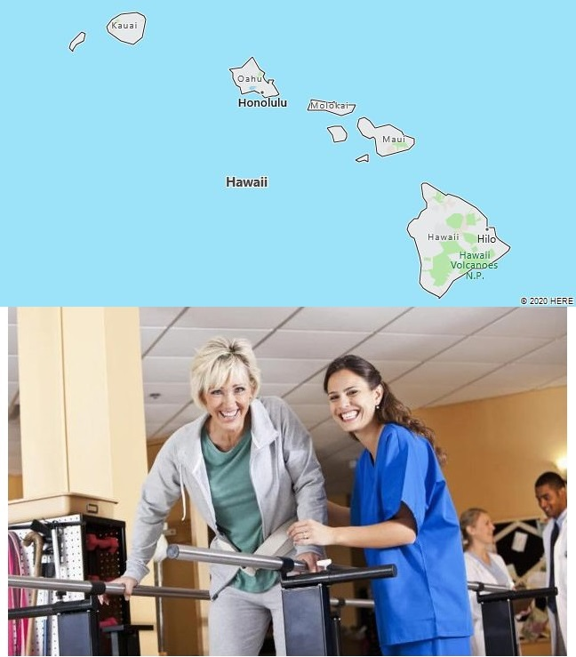 Top Physical Therapy Graduate Programs in Hawaii