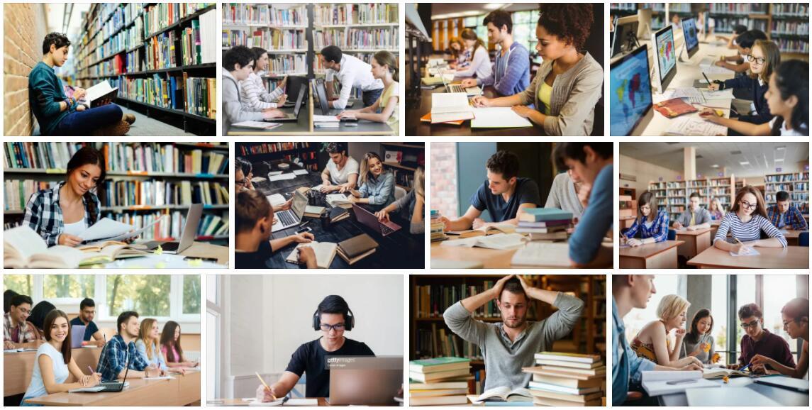 Study Media Studies