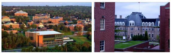 University of New Brunswick Study Abroad