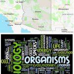 Top Biological Sciences Schools in Arizona