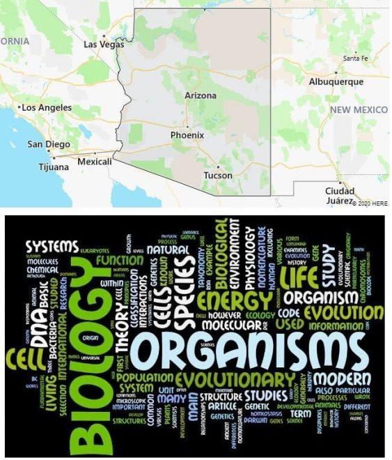Biological Sciences Schools in Arizona