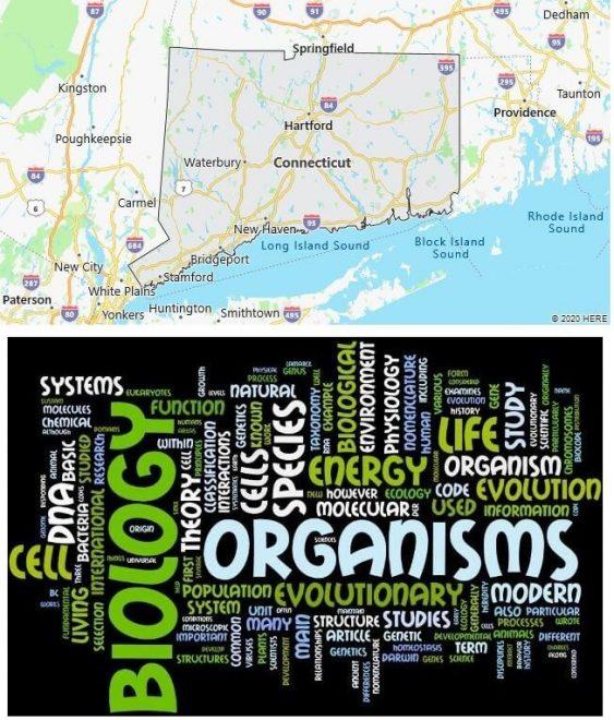 Biological Sciences Schools in Connecticut