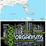 Top Biological Sciences Schools in Florida