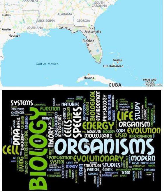 Biological Sciences Schools in Florida