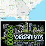 Top Biological Sciences Schools in Georgia