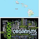 Top Biological Sciences Schools in Hawaii