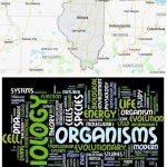 Top Biological Sciences Schools in Illinois