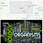 Top Biological Sciences Schools in Kansas