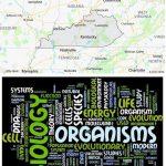 Top Biological Sciences Schools in Kentucky