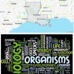 Top Biological Sciences Schools in Louisiana