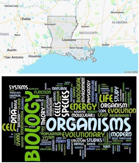 Biological Sciences Schools in Louisiana