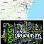 Top Biological Sciences Schools in Maryland
