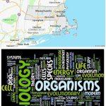 Top Biological Sciences Schools in Massachusetts