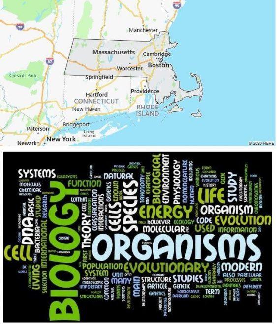 Biological Sciences Schools in Massachusetts