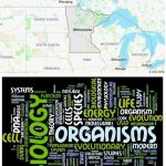 Top Biological Sciences Schools in Minnesota