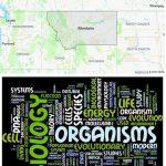 Top Biological Sciences Schools in Montana