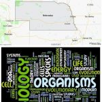 Top Biological Sciences Schools in Nebraska