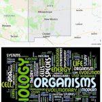 Top Biological Sciences Schools in New Mexico