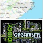 Top Biological Sciences Schools in North Carolina
