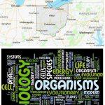 Top Biological Sciences Schools in Ohio