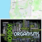 Top Biological Sciences Schools in Oregon