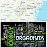 Top Biological Sciences Schools in West Virginia