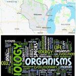 Top Biological Sciences Schools in Wisconsin
