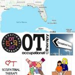 Top Occupational Therapy Schools in Florida