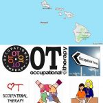 Top Occupational Therapy Schools in Hawaii