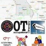 Top Occupational Therapy Schools in Missouri