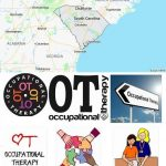 Top Occupational Therapy Schools in South Carolina