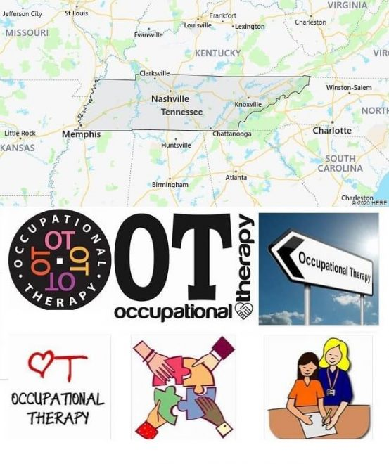 Occupational Therapy Schools in Tennessee