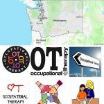 Top Occupational Therapy Schools in Washington
