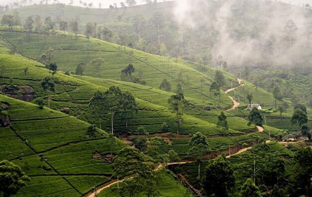 Sri Lanka Beyond the Highways